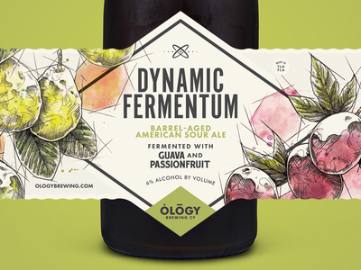 Dynamic Fermentum Guava & Passionfruit bottle illustration passionfruit guava sour beer ology