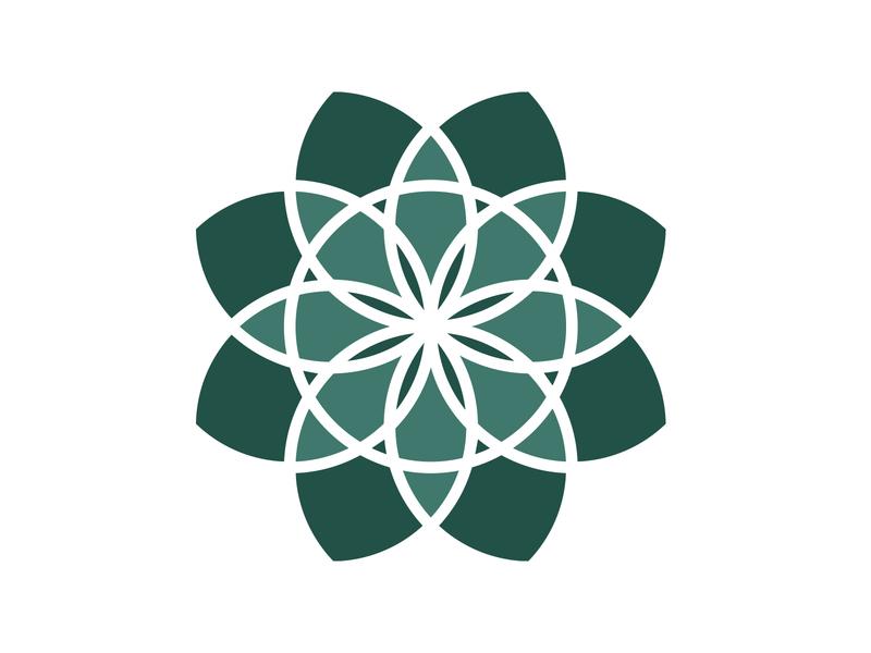Logo for holistic practitioner symetry balance iconography icon logotype vector illustration logo