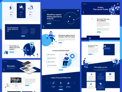CodeRex Design modern contact clean team site illustraion identity agency webdesign web ux design ui design ux ui inspiration design brand