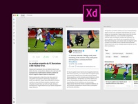 News Details UI/UX (XD)