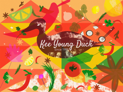 Ready Duck Meal Package illustration brand packaging