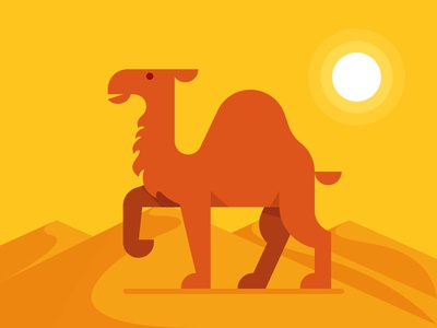 Desert Camel dunes sun animal heat burning hot summer flat illustration camel desert
