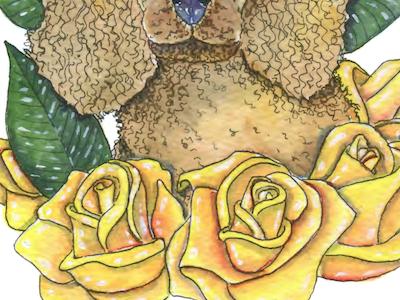 Yellow Roses dog animal portrait watercolor illustration fauna flora poodle flower rose