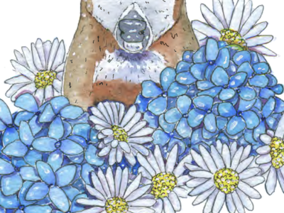 Hydrangea and Daisies daisy hydrangea fauna animal flowers flora painting traditional watercolor antlers illustration deer