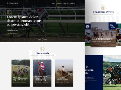 Racehorse tracking service - Landing page gold royal luxury horse layout homepage web design