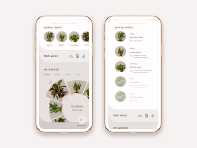 Take care of your plants! reminders feeds plants spinner expanding tabs tabs app design mobile app