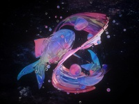 The colourful fish
