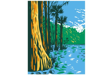 Everglades National Park WPA Poster art conservation area protected area nature landscape scenery forest flora national monument mountain range national park national forests cypress tree pine flatwoods sawgrass marshes coastal mangroves wpa