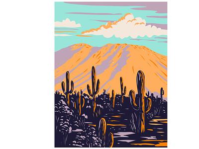 Wasson Peak in Saguaro National Park WPA landscape scenery forest flora national monument mountain range national park mountain trail desert cactus saguaro cactus wpa