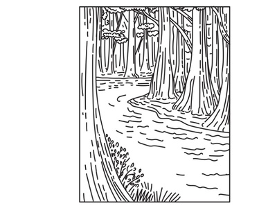 Bottomland Hardwood Forest in Congaree National Park Mono Line scenery