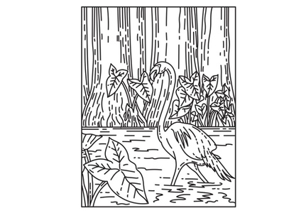 A Flamingo Wading in Everglades National Park Mono Line Art forest