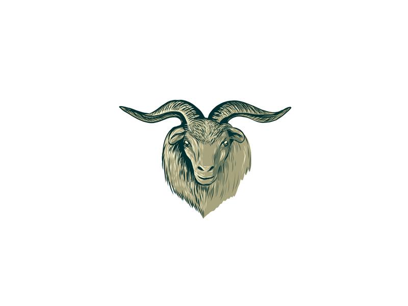 Cashmere goat head frnt dwg eps10
