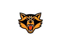 Angry Raccoon Head Mascot