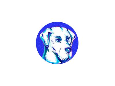Labrador Retriever Dog Doodle Circle