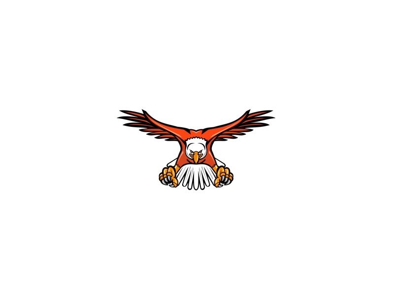 Bald Eagle Swooping Front Mascot team mascot identity character symbol sign retro head attacking flying raptor talon accipitridae birds of prey bird sea eagle american eagle bald eagle eagle icon mascot
