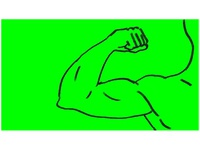 Arm Flexing Muscle Drawing 2D Animation