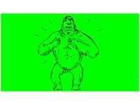 Silverback Gorilla Beating Chest Drawing 2D Animation
