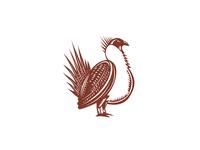 Sage Grouse Bird Woodcut