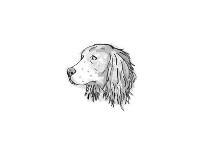 English Springer Spaniel Dog Breed Cartoon Retro Drawing