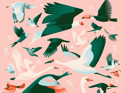 Above the Sky pattern collage flat flying toucan seagull sparrow pigeon crow dove swan crane eagle bird animal pastel texture gradient vector illustration