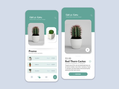 Cactus Shop App Exploration