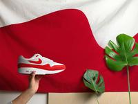 Air Max 1 Flag