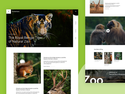 Natural Zoo natural discovery channel discovery national zoo zoo typography best shot landing page design landing page creative concept dribbble best shot