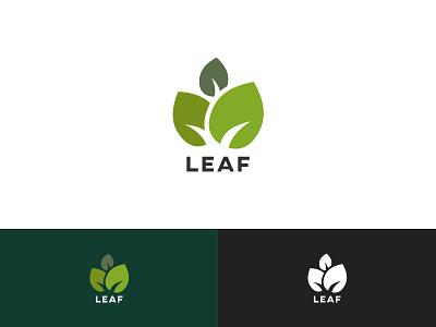 Leaf logo cms tree structure green leaves leaf nature identity logo