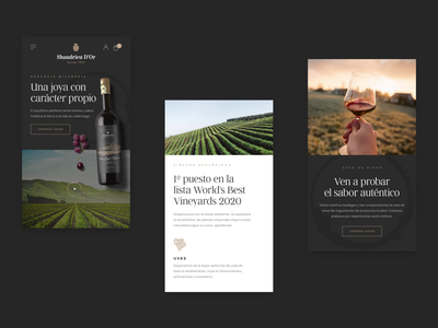 Wine shop responsive concepts responsive web design responsive design responsive ecommerce wine userinterface branding user interface layout concept typography clean modern minimal webdesign