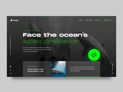 Cage diving company diving modern website uidesign booking sharks clean ux ui user interface webdesign web