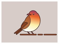 Weekly Warm-Up - Animal Icon Bird