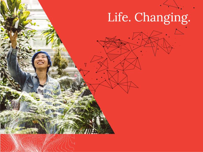 Transforming Delta change dynamic academic organic geometric transform delta