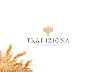 Agriculture Logo logotype branddesign logodesign grains wheat nature agriculture agri farm vector branding typography brand logo corporate design