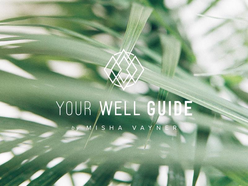 Your Well Guide branding blogger logo design adobe illustrator