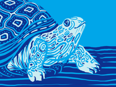 All Nippon Airways: International Turtle Day turtle day holiday art pattern illustration photoshop all nippon airways japan blue turtle