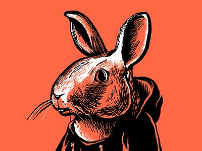 Bunster Bunn ears bunny art fur hair portrait color hoodie graphic bold photoshop raster illustration rabbit