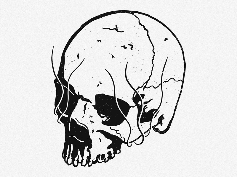 Skull Illustration draw logo merchdesgn illustration skulls skull procreate ipadpro