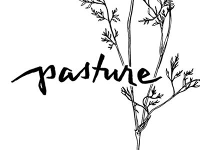 Pasture restaurant identity auckland foraging fine dining restaurant branding minuscule lowercase brush lettering hand lettering