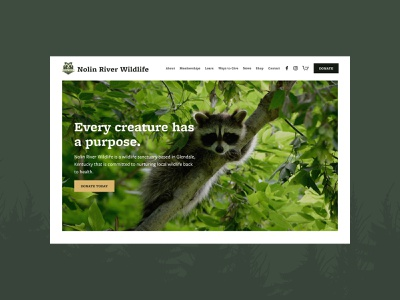 Nolin River Wildlife - Home Screen donation ux ui hero image landing page homepage website racoon sanctuary nonprofit wildlife