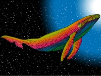The rainbow whale of my dreams