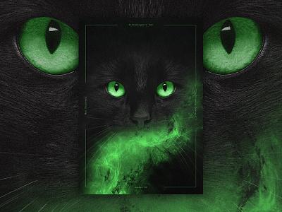 Science Posters - Schrödinger's Cat (Photo Composition) photocomp scientific posters photoshop composition photo posterdesign poster science experiment cat schrödingerscat