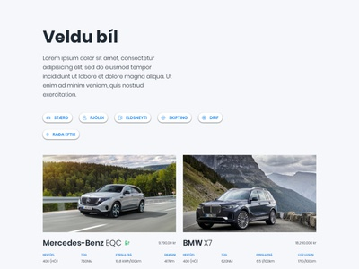 Choose your next car website web ui web design iceland filters choose cars