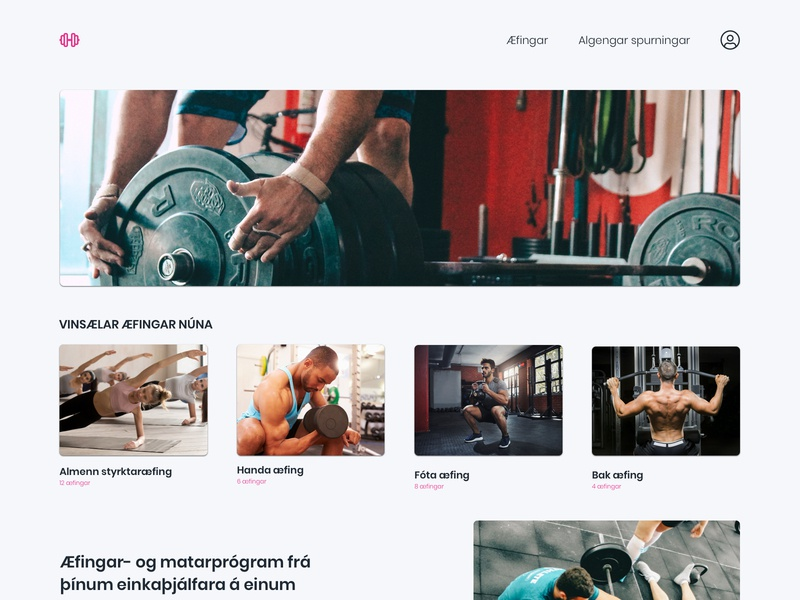 Gym website web design ui iceland website app gym
