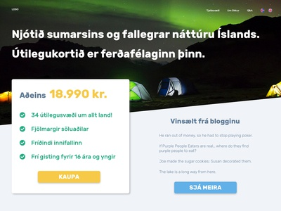 Travel Website website web design iceland web ui design travel
