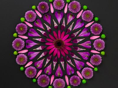 Flower Power website design the potting shed hand crafted kaleidoscope flowers logo design graphic design visual language brand design flower art