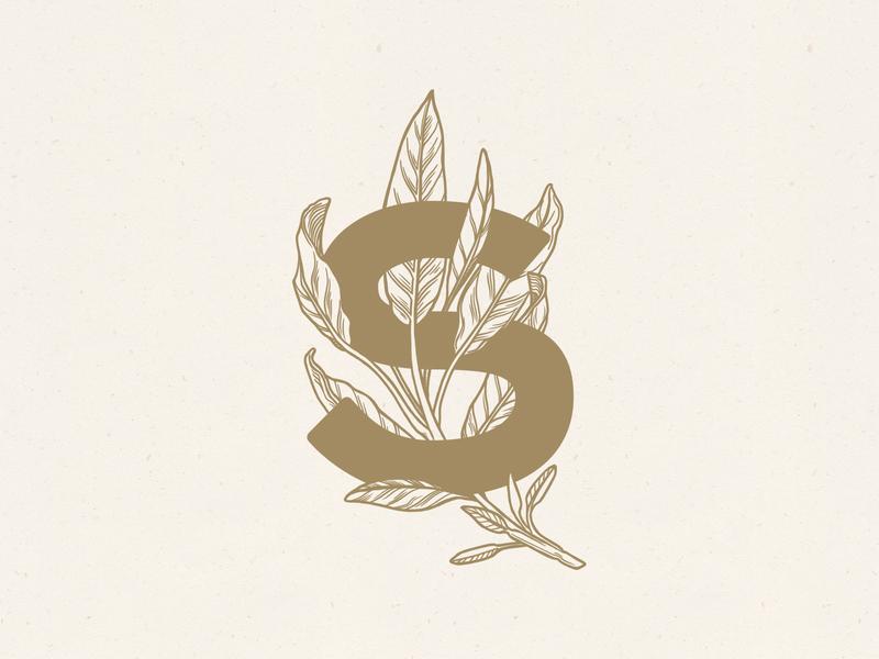 Sage Illustration & Type