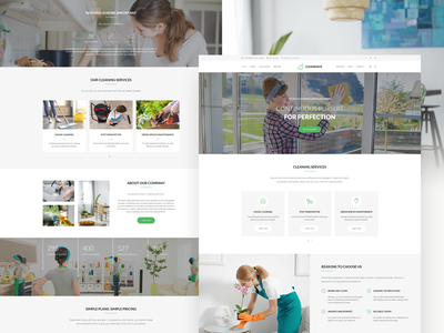 Cleanmate - Cleaning Company WordPress Theme carwash maid theme wordpress laundry garden gardener cleaning