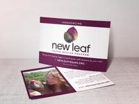 New Leaf Postcard