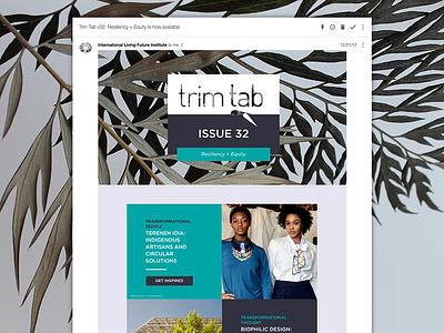 Trim Tab v32 branding graphic design