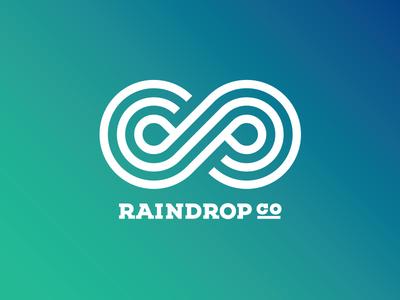 Raindrop Co logo concept